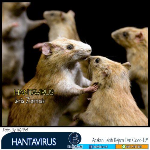 Hantavirus dianggap Kasus Baru di China