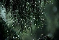 Hujan Sebagai Berkah